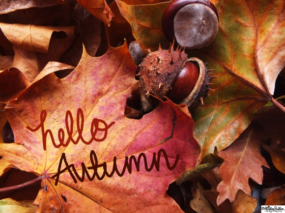 Workspace Wednesday – Hello Autumn at www.elistonbutton.com - Eliston Button - That Crafty Kid