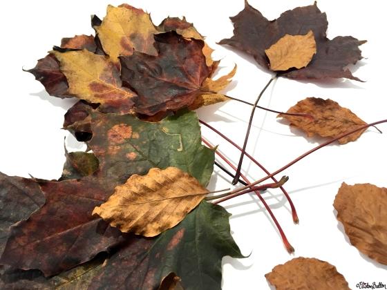 Autumn Leaves - Workspace Wednesday – Autumn Leaf Art at www.elistonbutton.com - Eliston Button - That Crafty Kid