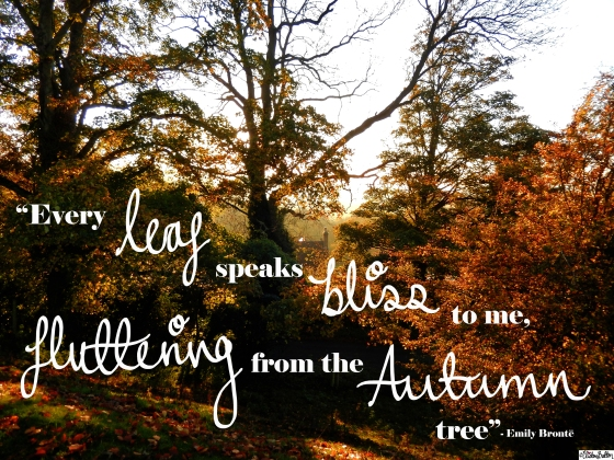 Every Leaf Speaks Bliss To Me, Fluttering From The Autumn Tree - Emily Bronte Quote On Autumn Photograph From Dovers Hill, The Cotswolds - An Autumn Adventure at www.elistonbutton.com - Eliston Button - That Crafty Kid