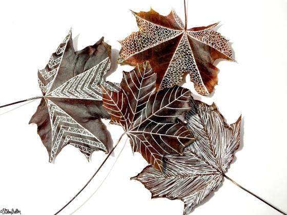 Large Illustrated Autumn Leaves - Workspace Wednesday – Autumn Leaf Art at www.elistonbutton.com - Eliston Button - That Crafty Kid